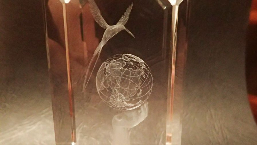 Kryształowy Koliber edycja 2020